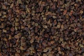 Image result for ORGANIC SULTANAS