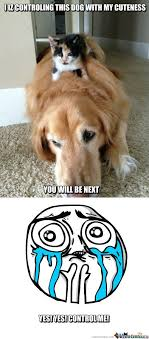 Cute Dog Memes. Best Collection of Funny Cute Dog Pictures via Relatably.com