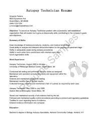 xray tech resume sample support x ray cover letter gallery of cover letter for it technician job