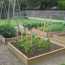 Small Picture Setting Up A Garden Drip Irrigation System Vegetable Gardener