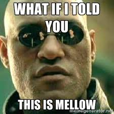 What if I told you this is Mellow - What If I Told You Meme | Meme ... via Relatably.com