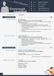 resume templates professional report template word  85 remarkable resume templates on word