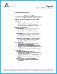 how professional database developer resume must be written how database developer resume objective