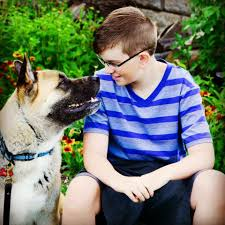 dog training canine professionals dog trainer directory iacp founded in 1999 the iacp was established to develop and promote the highest standards of professional and business practice among canine professionals
