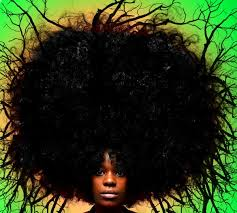 Image result for bad afro hair day