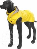 «Одежда <b>RUKKA</b> для <b>собак</b>» — Товары для животных — купить ...
