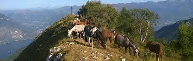 Risultati immagini per comunita' montana