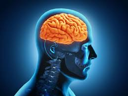 disease linked to head trauma in hs sports virginia brain inury it s brain injury