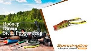 Лягушка <b>Daiwa Steez Popper</b> Frog Suika, арт. 0743 0136 – купить ...