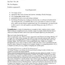 novel essay example  socialsci conovel