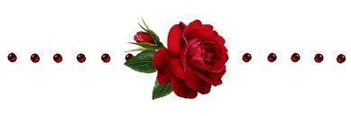 """Résultat de recherche d'images pour """"citation sur la rose"""""""