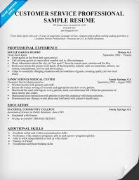 Customer service resume  Customer service and Professional resume     Pinterest Customer service resume  Customer service and Professional resume on Pinterest