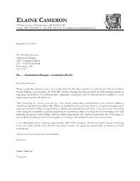 Customer Service Cover Letters Examples  customer service cover