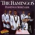Flamingo Serenade