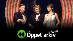 <b>Öppet arkiv</b> - Vanliga frågor och svar | SVT.se