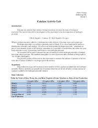 How to write an excellent Extended Essay Abstract Nature