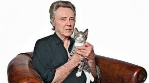 Why <b>real men love cats</b> | Weekend | The Times