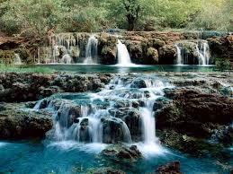 لكل محبي صور الطبيعة  اكبر تجميع لصور الطبيعة Images?q=tbn:ANd9GcT-qlsX2WTaDlFn8AkysvJx_D539MD1jbSTWspwNz6ybYNRkS8UFQ