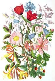 꽃다발에 대한 이미지 검색결과