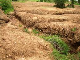 soil formation important factors responsible for soil formation soil formation 4 important factors responsible for soil formation in