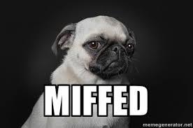 Miffed - A-Dog Barksdale | Meme Generator via Relatably.com