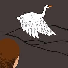 a white heron sarah orne jewett essay com
