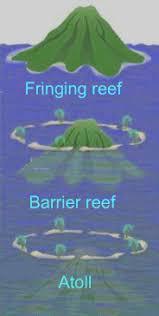 Image result for fringing reef