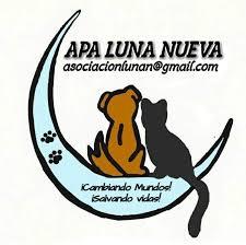 APA LUNA NUEVA - Photos | Facebook