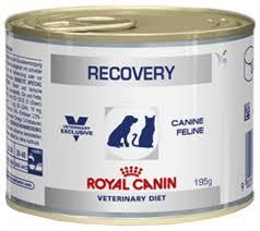 <b>Royal Canin</b> Recovery <b>консервы</b> для собак и кошек в период ...