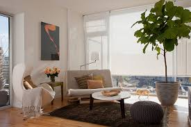 living room green floor poted plants add feng shui living room decorating feng shui how chic feng shui living room
