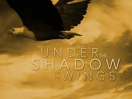 best images about under the shadow of his wings 17 best images about under the shadow of his wings bible quotes wings and god