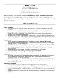 professional resume writers Chronological Resume Example Chief Financial Officer pg