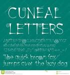 Images & Illustrations of cuneal