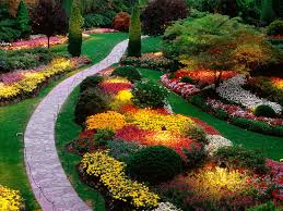 1000 images about landscaping on pinterest landscape design landscaping ideas and front yard landscaping bedroommagnificent lush landscaping ideas