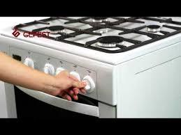 напольная газовая плита <b>Гефест ПГ 5100-03 0001</b>, отзывы, цена