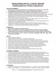 project manager business analyst resume example of business analyst resume