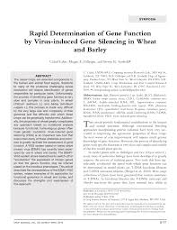 (PDF) Rapid Determination of Gene Function by Virus-induced ...
