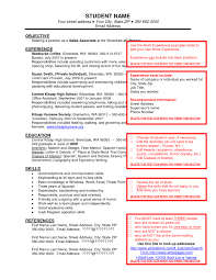 examples of resumes resume samples for it jobs format teacher 81 amusing job resume example examples of resumes