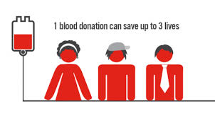 Info for students | Australian Red Cross Blood Service