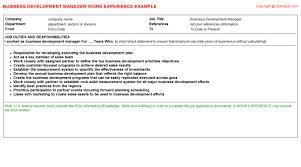 development executive cv work experience  amp  templates formats   business development manager   career sample template  cv