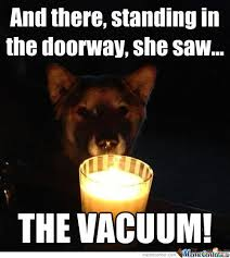 Scary Dog Memes. Best Collection of Funny Scary Dog Pictures via Relatably.com