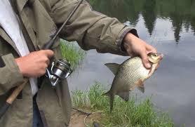 ᐉ Распродажа крючков по оптовой цене - Рыбак и Рыбачок Опт