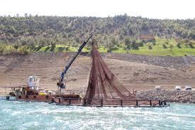Denize kıyısı olmayan Maraş'tan 15 ülkeye balık ihracatı