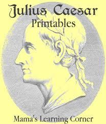 Writing my research paper brutus is a tragic hero in julius caesar Buy research paper online Pinterest