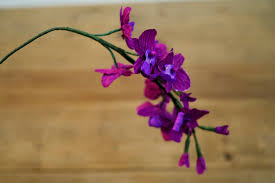 day orchid decor: zoom il fullxfull cu zoom
