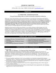 samples of executive resumes  seangarrette cosamples of executive resumes