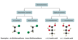what are stereoisomers give me an example example 2012books lardbucket org
