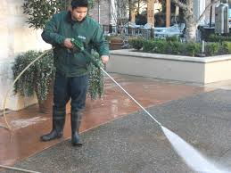 janitorial services carpet cleaning steam cleaning office more than a decade of experience we developed a wide range of skills and expertise