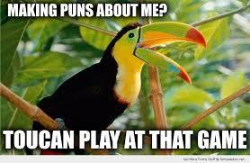 Image result for bird jokes humor