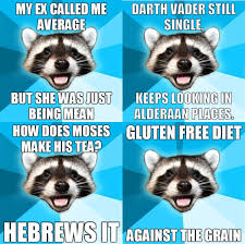 Meme and other LOL: Lame Pun Coon Again Again via Relatably.com